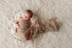 睡觉在碗的新出生的男婴 免版税库存图片