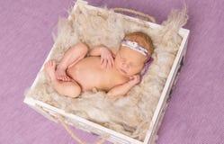睡觉在紫罗兰色背景的箱子的赤裸婴孩 库存照片