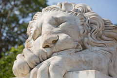 睡觉狮子的大理石雕塑 免版税库存图片