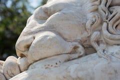 睡觉狮子的大理石雕塑 库存图片