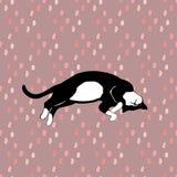 睡觉猫样式无缝在传染媒介 免版税库存照片