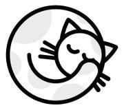 睡觉白色灰色猫 免版税库存图片