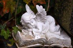 睡觉的天使-作梦 免版税库存照片