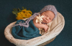 睡觉的新出生的男孩 库存图片