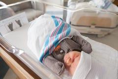 睡觉的新出生的婴孩在医院 图库摄影