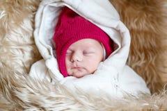 睡觉的新出生的婴孩画象在温暖的冬天穿衣 免版税库存照片