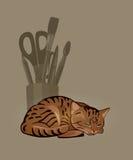 睡觉镶边猫和一个碗有文具的 图库摄影