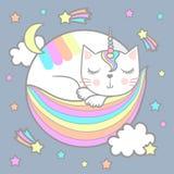 睡觉catwith独角兽垫铁 免版税库存照片