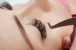 睫毛移动程序关闭  有长的鞭子的美丽的妇女在美容院 免版税库存照片