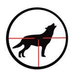 瞄准具狼 免版税库存照片