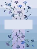 从矢车菊的明信片与正方形在中部 库存照片