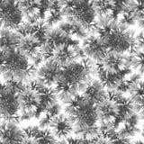 矢车菊的灰色无缝的样式 库存照片