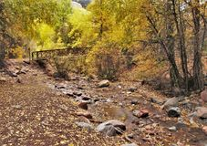 短号在碲化物,科罗拉多的小河桥梁 图库摄影