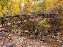 短号在碲化物,科罗拉多的小河桥梁 免版税库存图片
