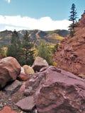 短号小河落在碲化物,科罗拉多的足迹 免版税库存图片