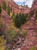 短号小河落在碲化物,科罗拉多的足迹 免版税库存照片