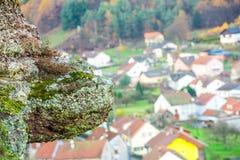 石乌龟侵略了山村 库存照片