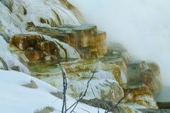 黄石冬天风景 库存图片