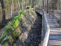 石凹线Steinerne Rinne自然纪念碑 免版税库存图片