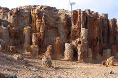 石化Forrest波特兰 库存图片
