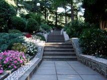 石台阶在作为供徒步旅行的小道一部分的绿色热带庭院里 图库摄影