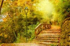 石台阶在公园 免版税库存图片