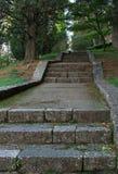 石台阶在老公园 库存图片