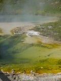 黄石国家公园在美国 免版税图库摄影