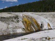 黄石国家公园在美国 库存照片