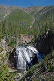黄石国家公园,美国 库存照片