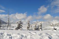 黄石在冬天 库存照片