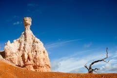 石地精和一个停止的结构树 免版税库存图片
