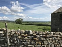 石块墙Wensleydale约克夏 库存照片
