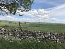 石块墙Wensleydale约克夏 免版税库存图片