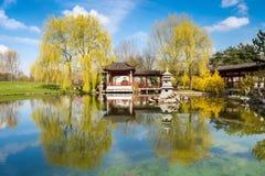 石塔在一个正式中国庭院的池塘 免版税库存照片