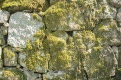 石墙与绿色青苔的背景纹理 免版税库存照片