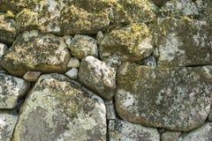 石墙与绿色青苔的背景纹理 库存照片