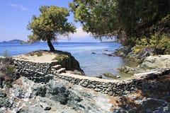 石壁架到有一棵孤独的杉木的海里 免版税库存图片