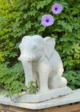 石大象, Narlai 库存图片