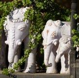 石大象, Narlai 库存照片
