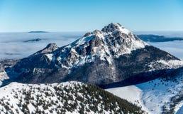 石大Rozsutec小山在冬天-斯洛伐克 免版税库存图片