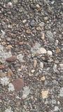 石头和地衣 免版税库存图片