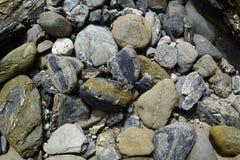 石头和岩石在海滩 库存照片