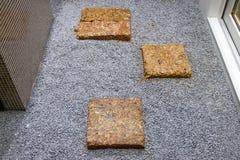 石头和正方形石头步行的 库存图片