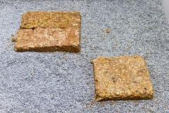 石头和正方形石头步行的 免版税库存图片