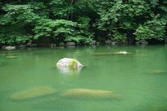 石头和河 库存图片