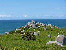 石头和海洋 库存照片