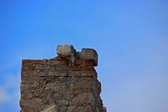 石头和砖与明亮的蓝天为使用作为背景或背景 库存照片