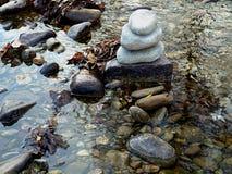 石头和落叶在小河 库存图片