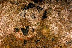 石头和青苔抽象难看的东西背景  库存照片